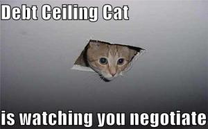 Debt-ceiling-cat
